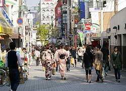 ทัวร์ญี่ปุ่น อาราชิยาม่า เกียวโต ฟูจิ โตเกียว 6วัน 4คืน บินTG