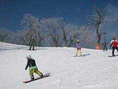 ทัวร์เกาหลี พักสกีรีสอร์ท เล่นสกีแบบเต็มอิ่ม เอเวอร์แลนด์ ช้อปปิ้งเมียงดง 5วัน 3คืน บิน T'WAY