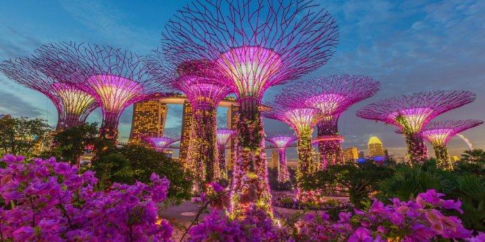 ทัวร์สิงคโปร์วันแม่ วัดพระเขี้ยวแก้ว GARDEN BY THE BAY 3วัน 2คืน บิน Scoot Airlines