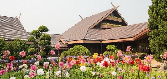 แพคเกจทัวร์ เชียงราย ภูหมอกมวลดอกไม้ ดอยตุง ดอยแม่สลอง ภูชี้ฟ้า 3วัน 2คืน
