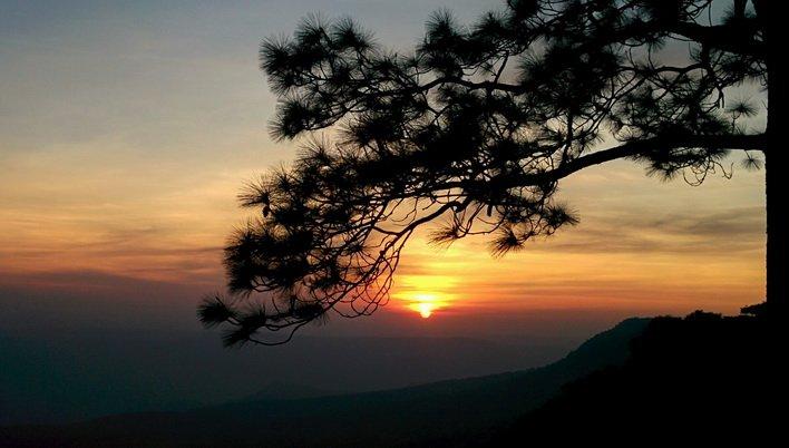 ทัวร์เลย เที่ยวภูกระดึง ดูพระอาทิตย์ขึ้น พักเต็นท์ 4วัน 2คืน