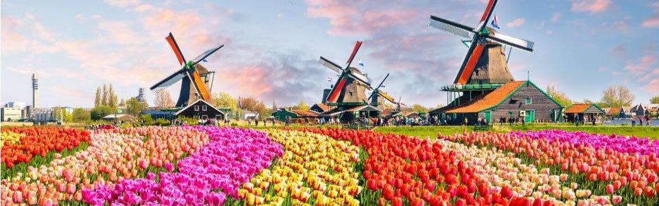 ทัวร์เนเธอร์แลนด์