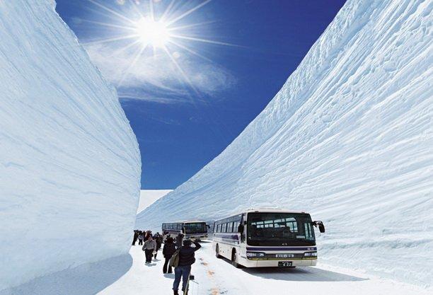 ทัวร์ญี่ปุ่น โตเกียว ภูเขาไฟฟูจิ เจแปน แอลป์ ทาคายาม่า เกียวโต 6วัน 3คืน บิน Thai Airways