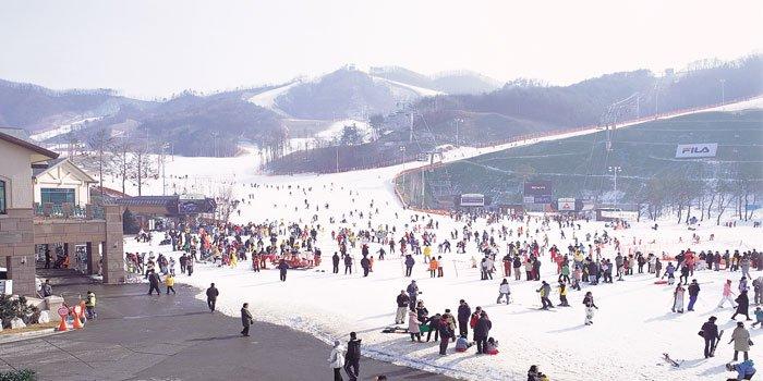 ทัวร์เกาหลี พักสกีรีสอร์ท ชมไร่สตรอเบอรี่ กินบุฟเฟ่ต์ขาปูยักษ์ 5วัน 3คืน บิน Jin Air