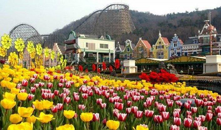 ทัวร์เกาหลีวันสงกรานต์ เกาะนามิ สวนสนุกเอเวอร์แลนด์ พาชม CHERRY BLOSSOM 5วัน3คืน