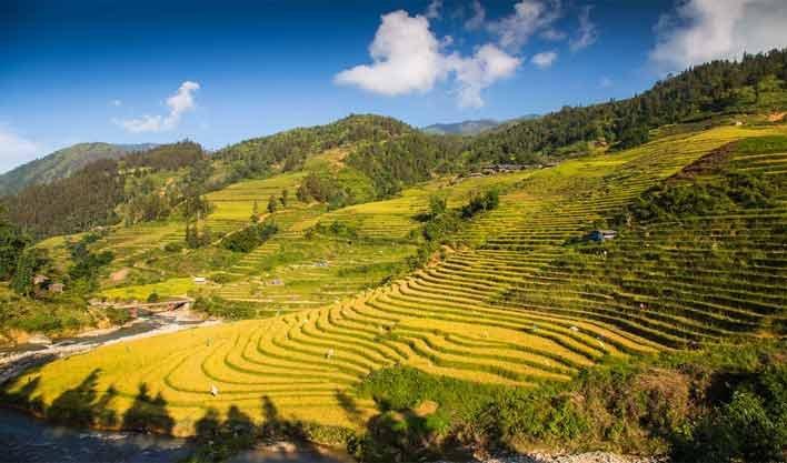 ทัวร์เวียดนาม ฮานอย หมู่บ้านชาวเขากัตกัต ซาปา ลาวไก 4วัน 3คืน บิน Vietnam Airlines